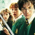 Harry Potter and the Chamber of Secrets Drinking Game