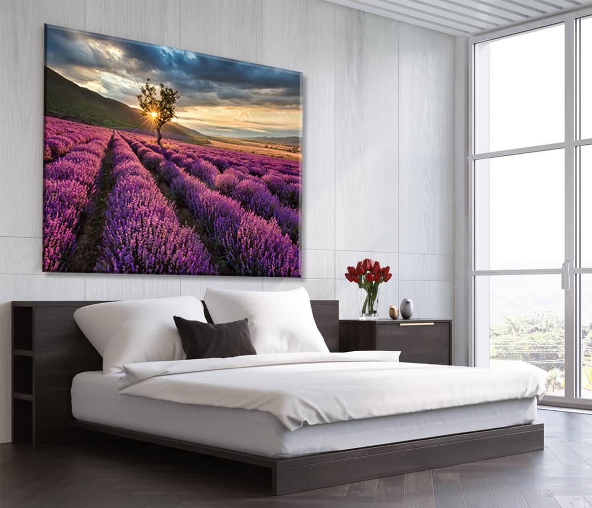 obraz do sypialni Lawenda - Kwiaty