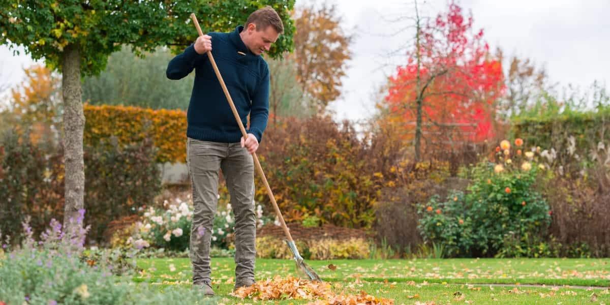 Mann hakt Laub im Herbst