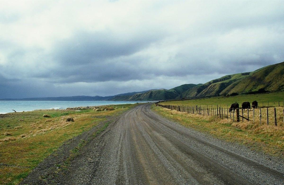 Neuseeland Roadtrip mit Kindern