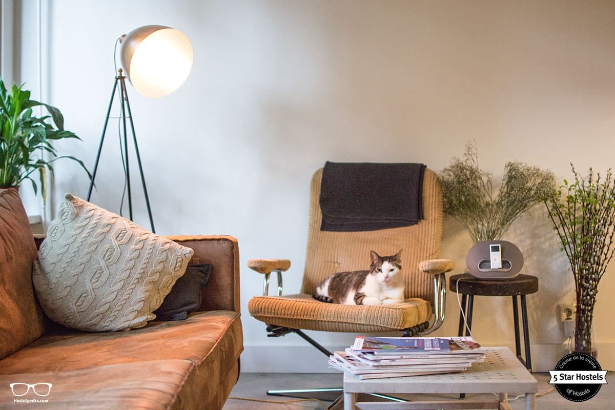 Joop and the stylish new common area at Cocomama Hostel