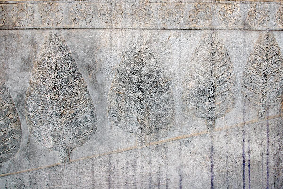 Fototapety 3D na wymiar Kamienne Drzewa