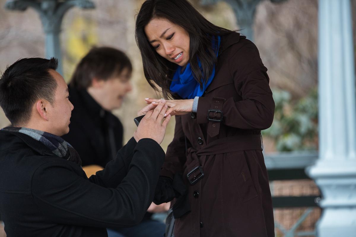 Photo 12 Surprise Proposal at Ladies Pavilion in Central Park | VladLeto
