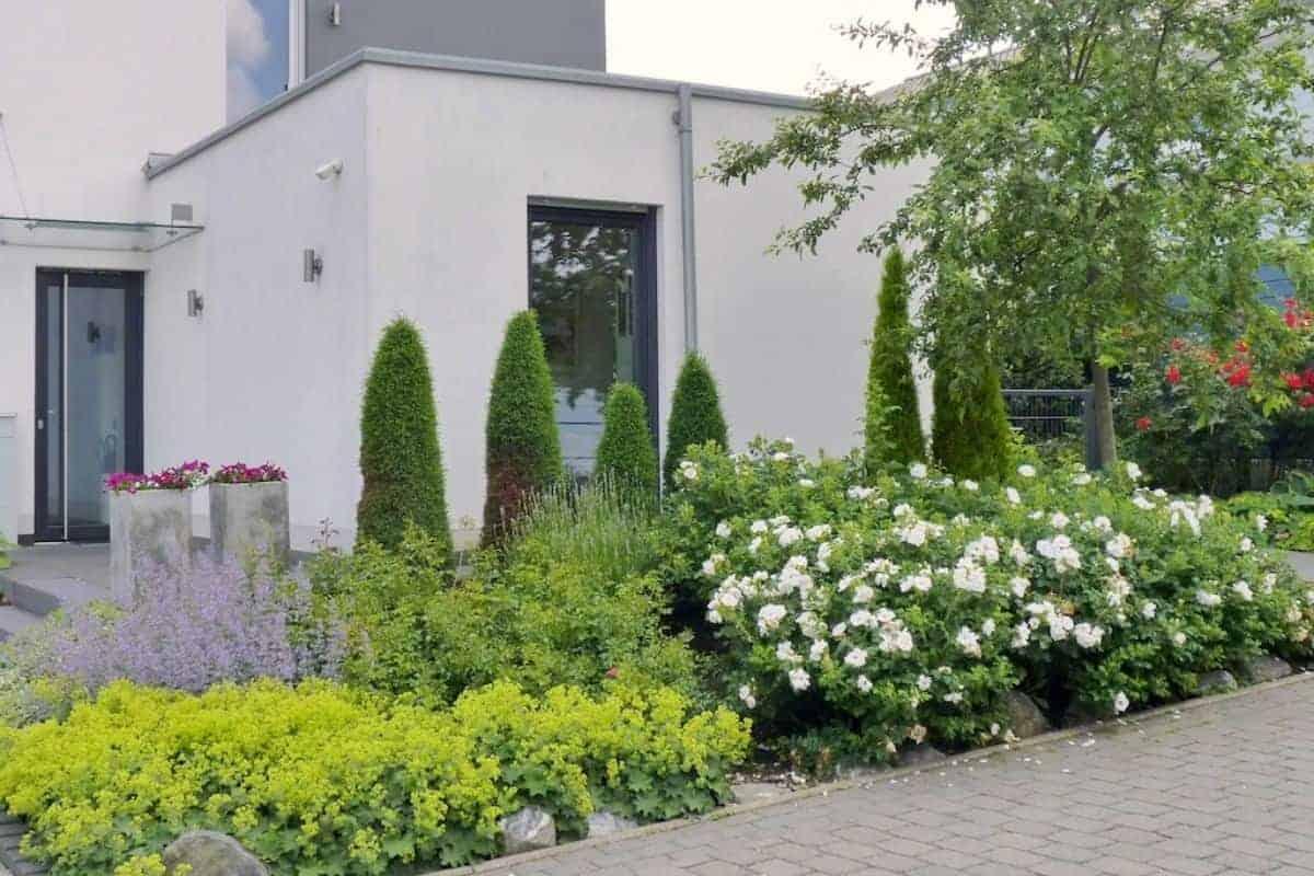 Gepflegter Vorgarten vor modernem Wohnhaus