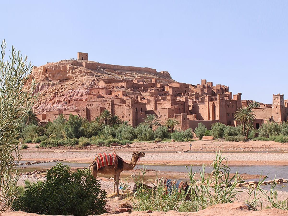 Randtrip mit Kindern durch Marokko