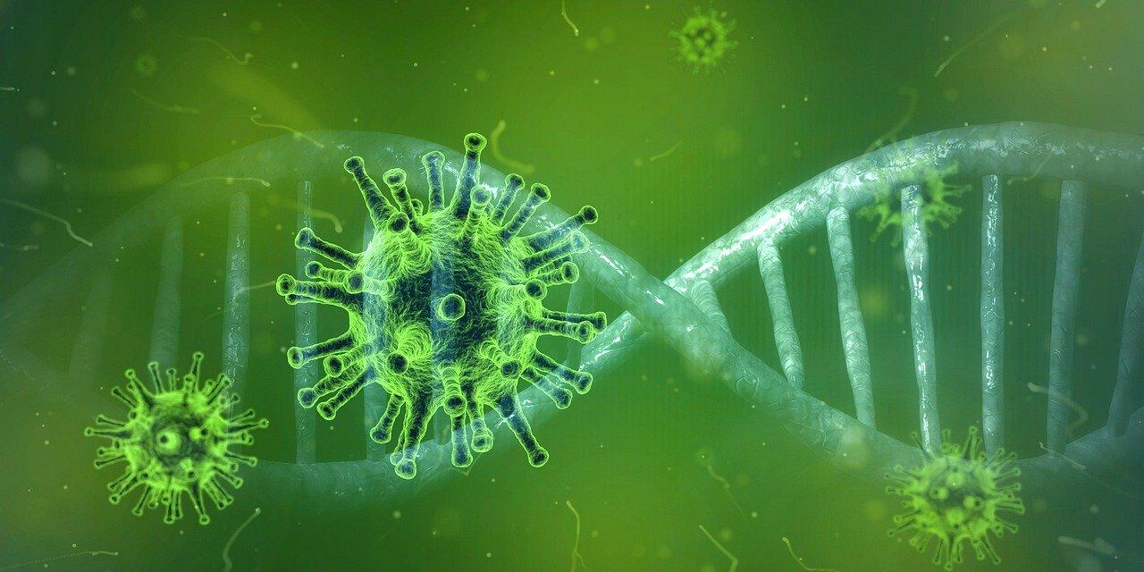 Foto: Coronavirus Grafik
