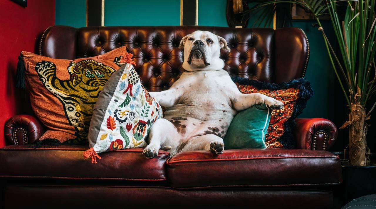 CouchSurfing to swietne budzetowe rozwiazanie