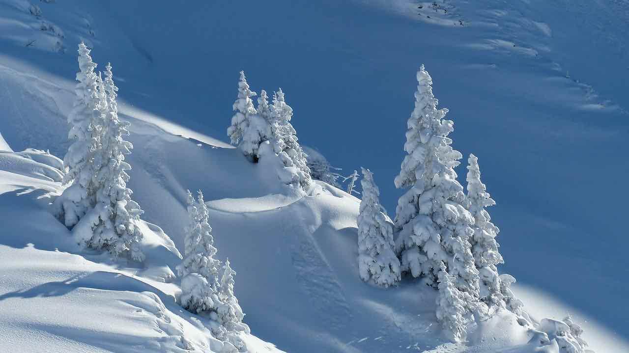 alpes nieve