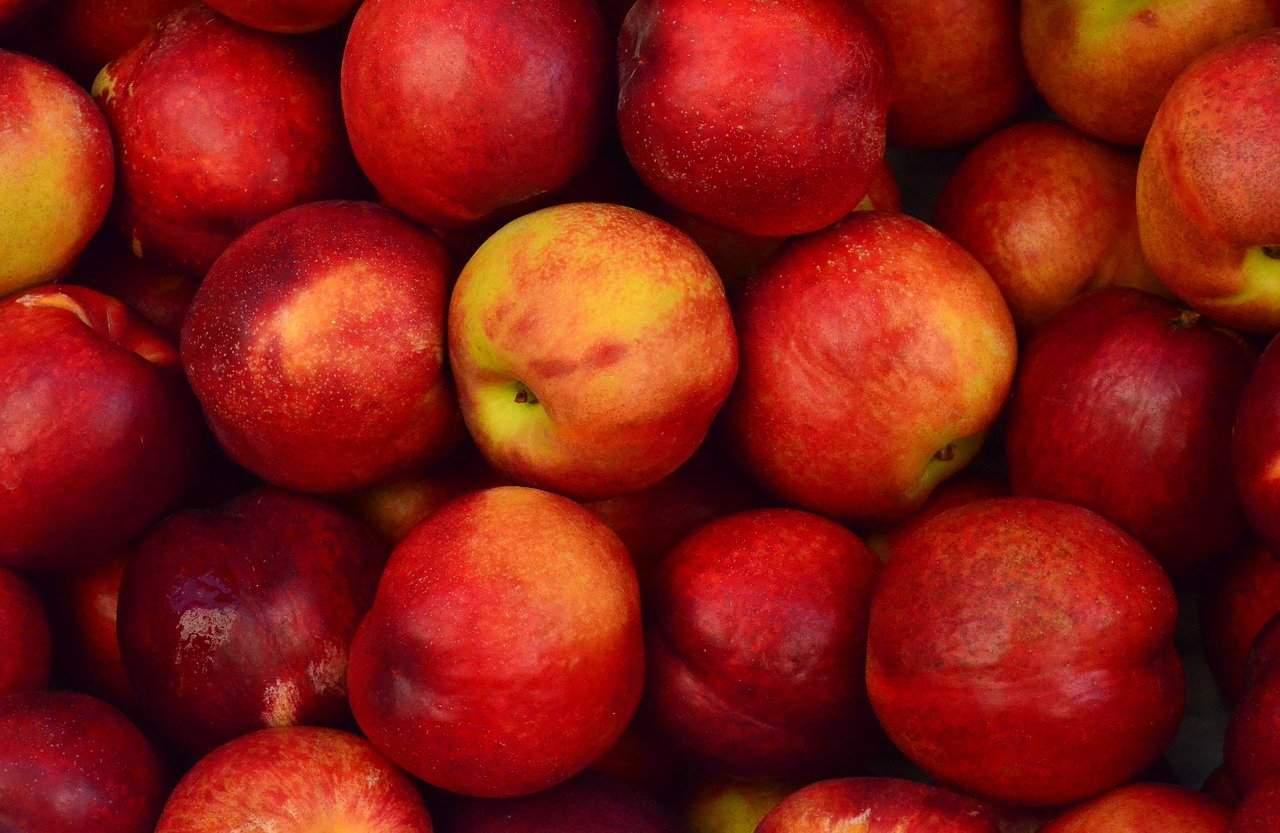 Warum Äpfel gesund sind?