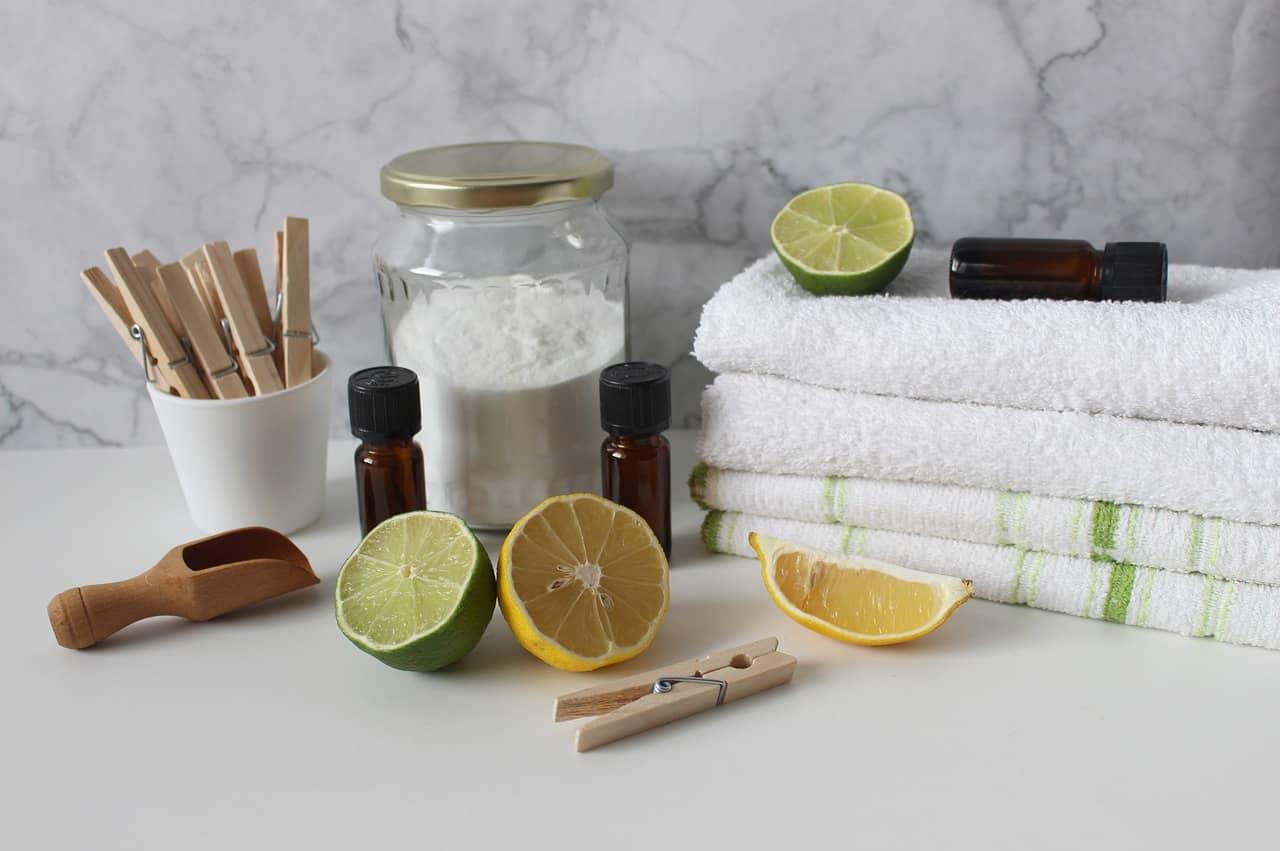 domača čistila doma narejena čistila extraveganza