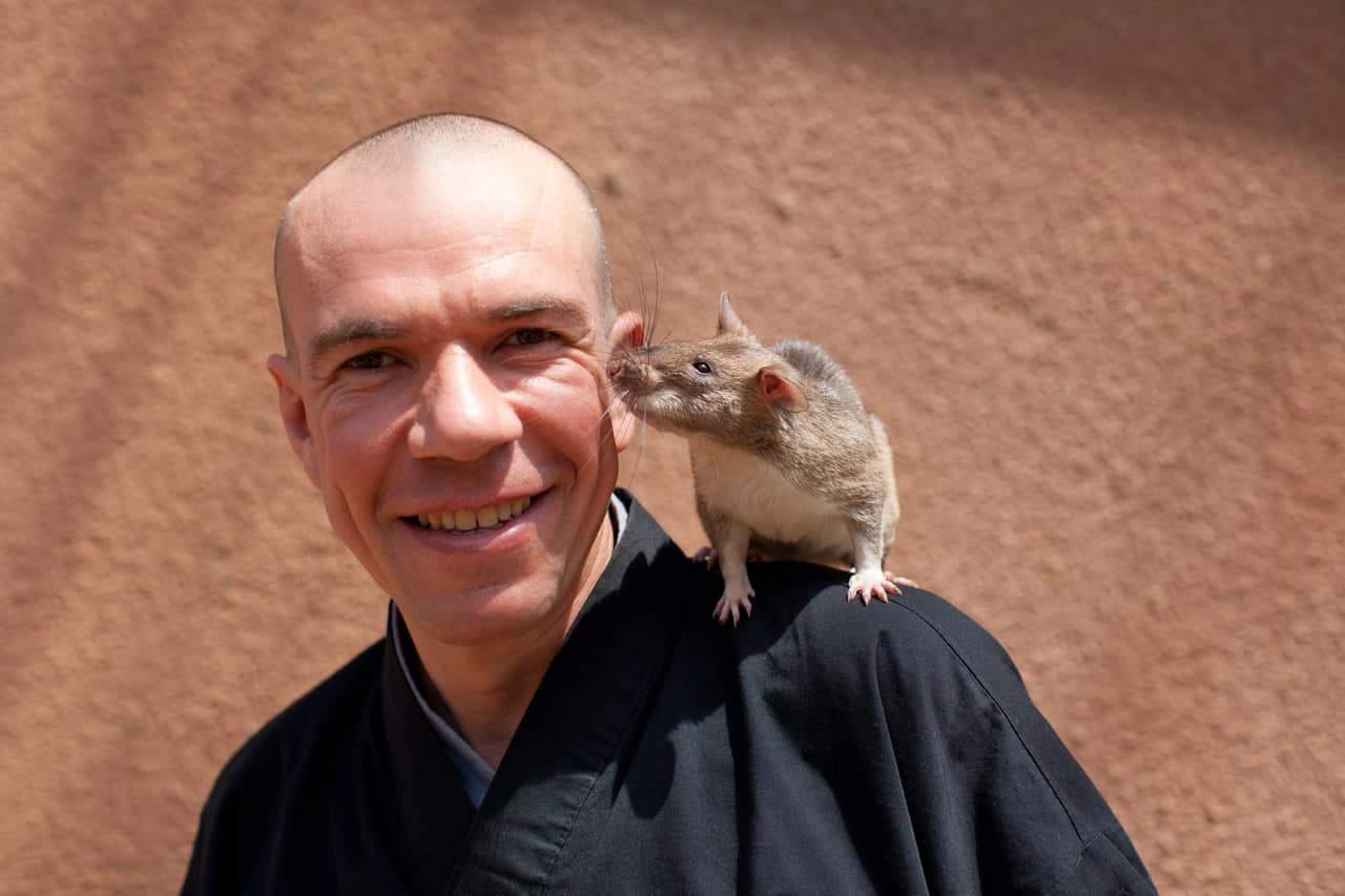 Bart Weetjens hero rats extraveganza