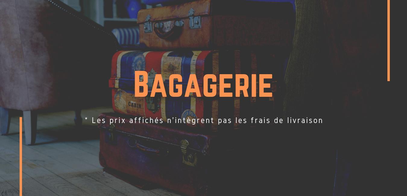 Transport de bagages entre la France et Londres