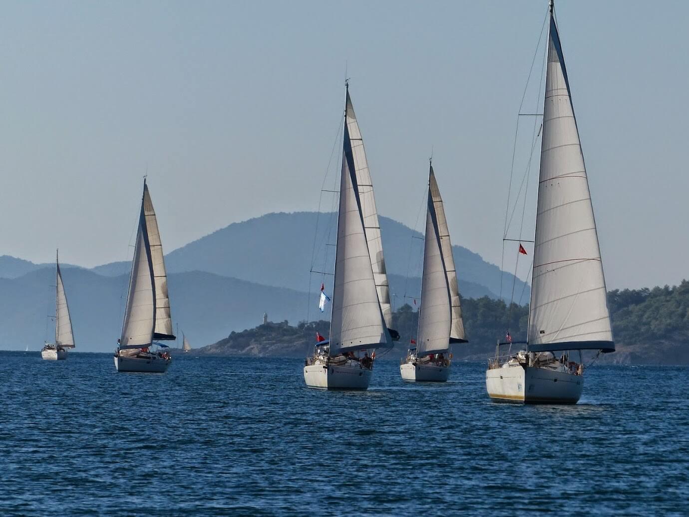 Mehrere Segelboote auf dem Meer