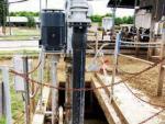 Szarvasmarhatrágyára alapozott biogázüzem