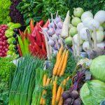 food for change Food for Change на Дорогомиловском рынке            2 150x150