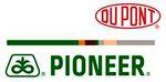 Pioneer hibrid ajánlat kései vetésekhez