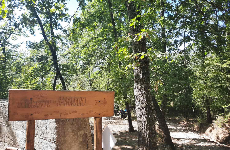 sentiero-del-Sammaro