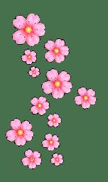 razgovorchiki zhenskie icon flower1