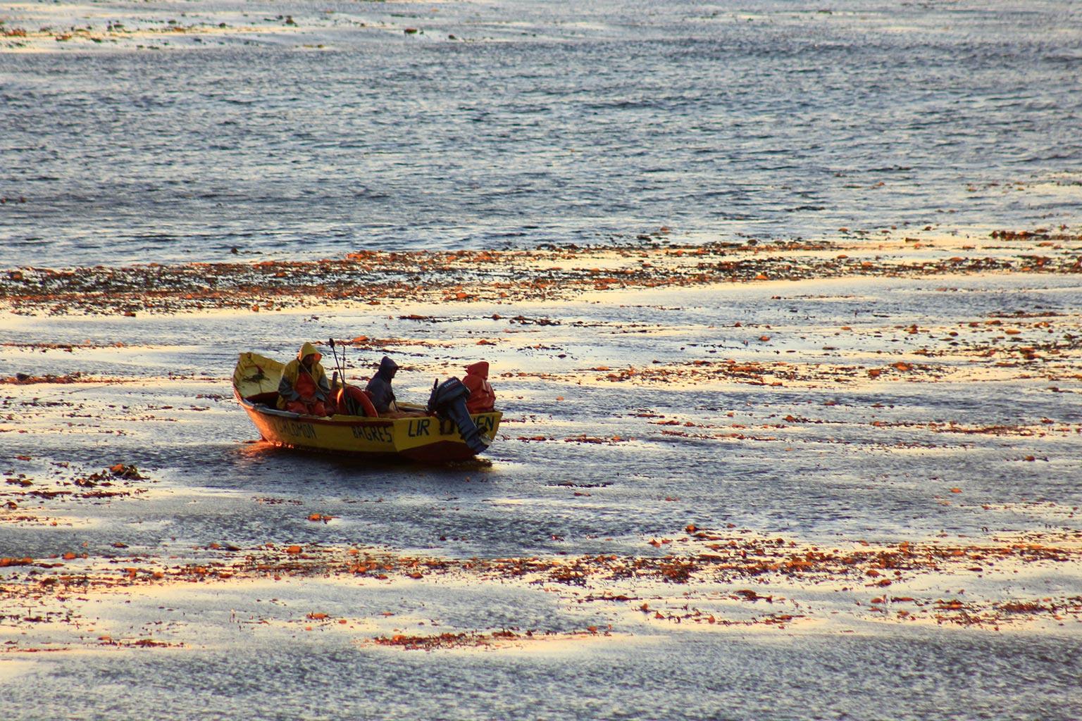 Pescadores en bote en el mar
