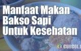 Manfaat Makan Bakso Sapi Untuk Kesehatan