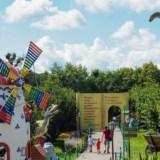 Dinopark Kołacinek – Co żarły dinozaury? :)