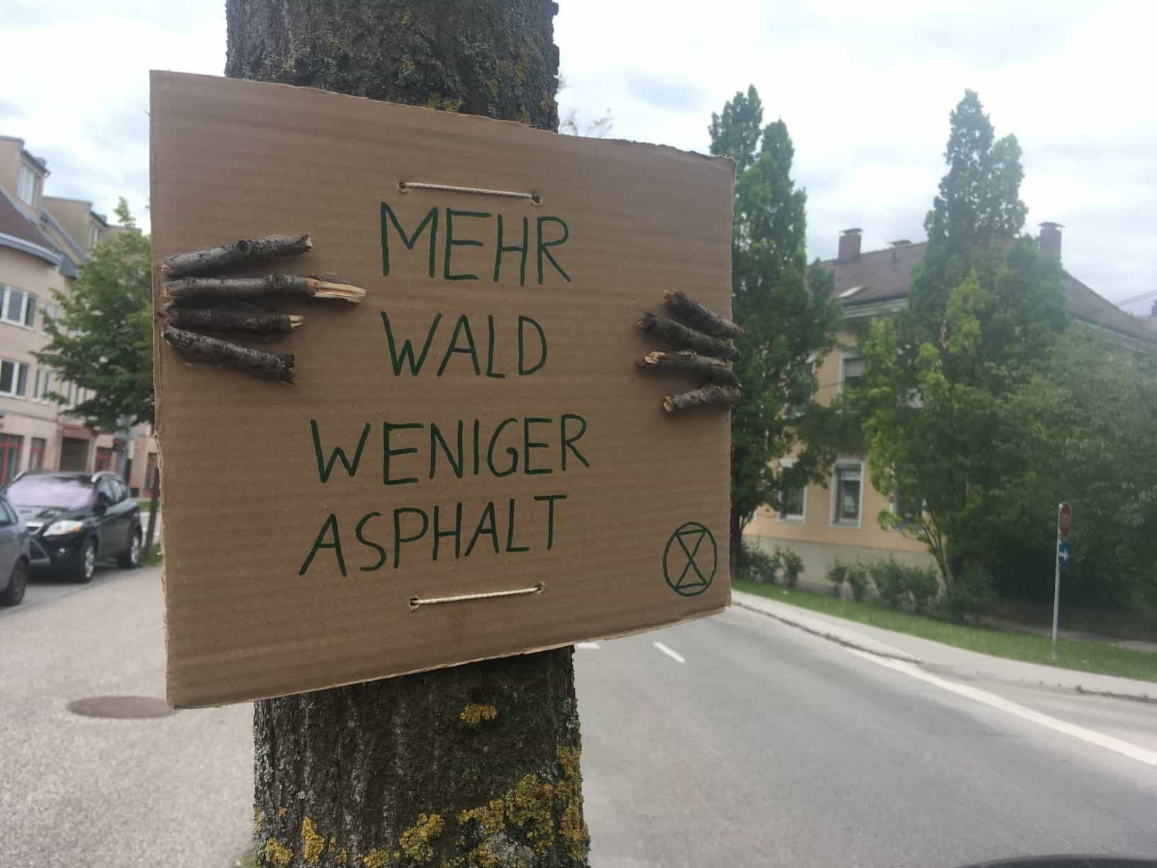 Ein Baum hält ein Schild und demonstriert für mehr Wald und weniger Asphalt(Aktion #aufbäumen)