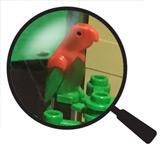 Hidden Lego Parrot