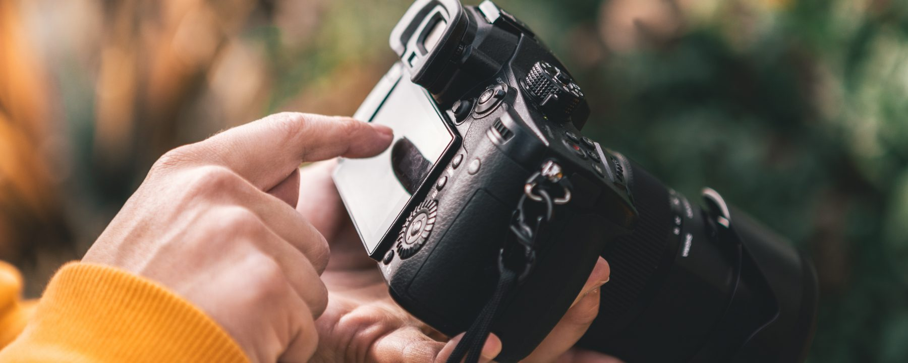intern wild interest and skills in photography