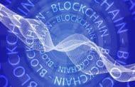 Typy architektur stosowanych w blockchainie - sharding, plasma, sidechains.