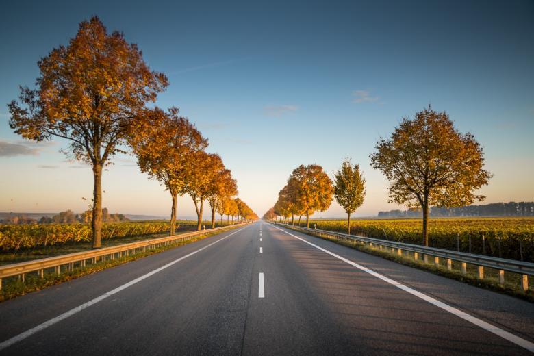 Правительство Германии хочет снизить смертность на дорогах. Фото: Karsten Würth / Unsplash.com