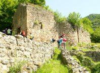 ostaci-manastira-petruska.jpg