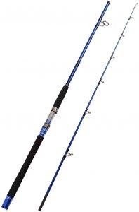 Fiblink 2-Piece Saltwater Spinning Fishing Rod