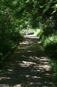 Riverdale Farm, Path To Ravine, Free Toronto, Toronto Family