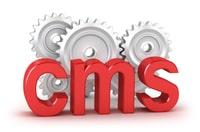 website maintenance cms