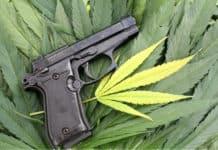 guns-marijuana-texas-ATF-mg-magazine-mgretailer