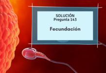 fecundación-onenfermeria-ginecología