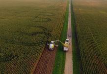 Dellait acquires Nutretain® forage preservation business