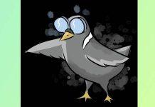 Bastard Pigeons: il gioco dei piccioni cacconi di Mattia Cagalli