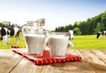 Küresel Süt Endüstrisi ve Trendler
