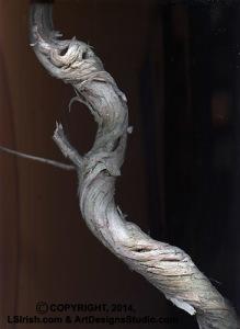 grapevine twistie stick