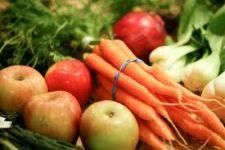 Tájékoztató a 2010. évben megjelenő, a termelői támogatásokról szóló rendeletekről