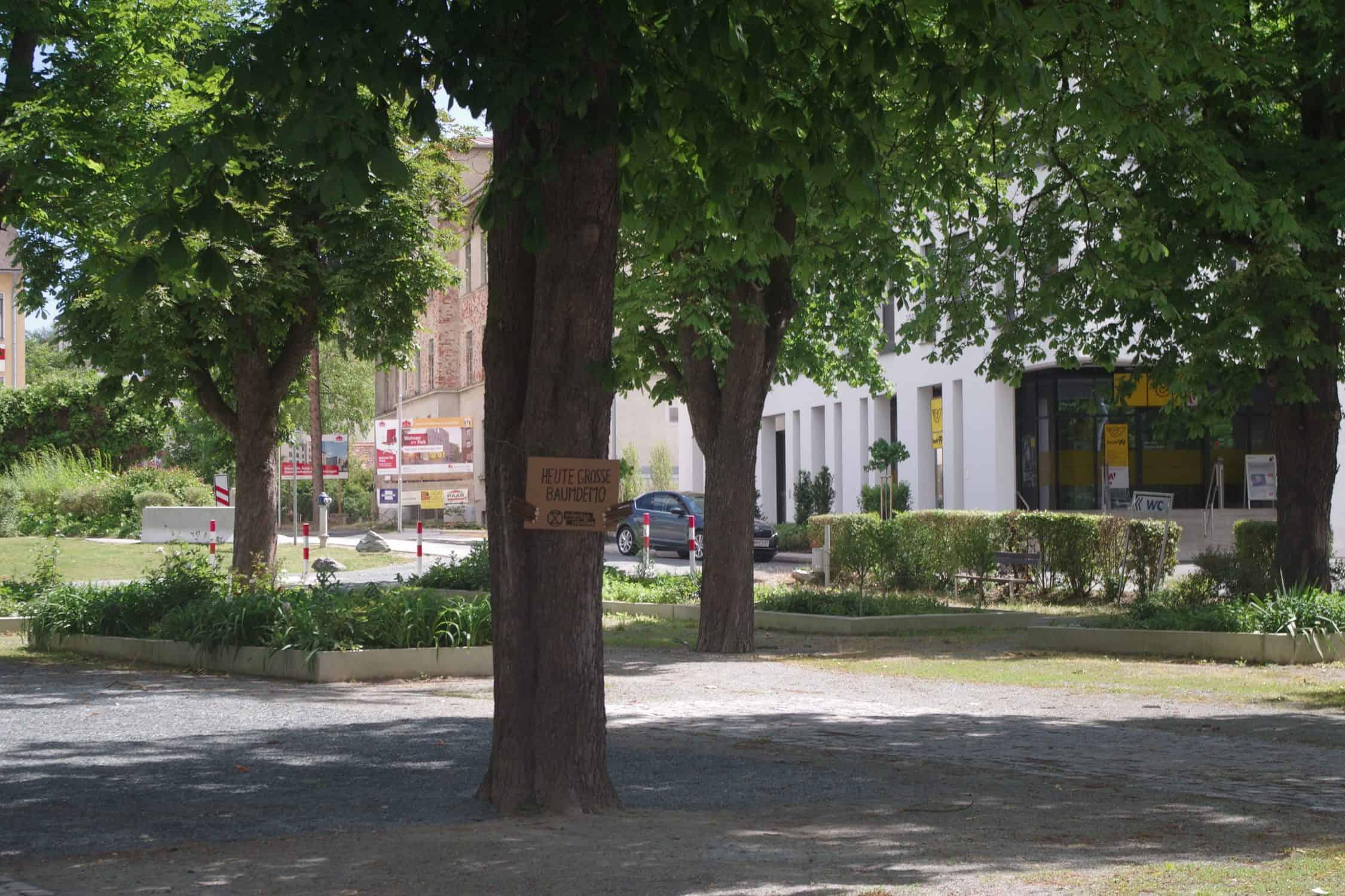 Baumdemonstrant in Oberwart