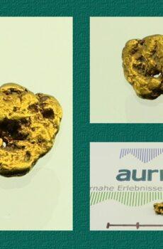 Gold Nugget - Val Sumvitg