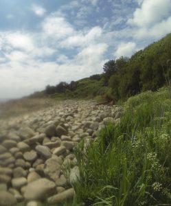 Die Steinwüste auf dem Trail