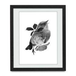 Joasia Luna – Plakat NR.4