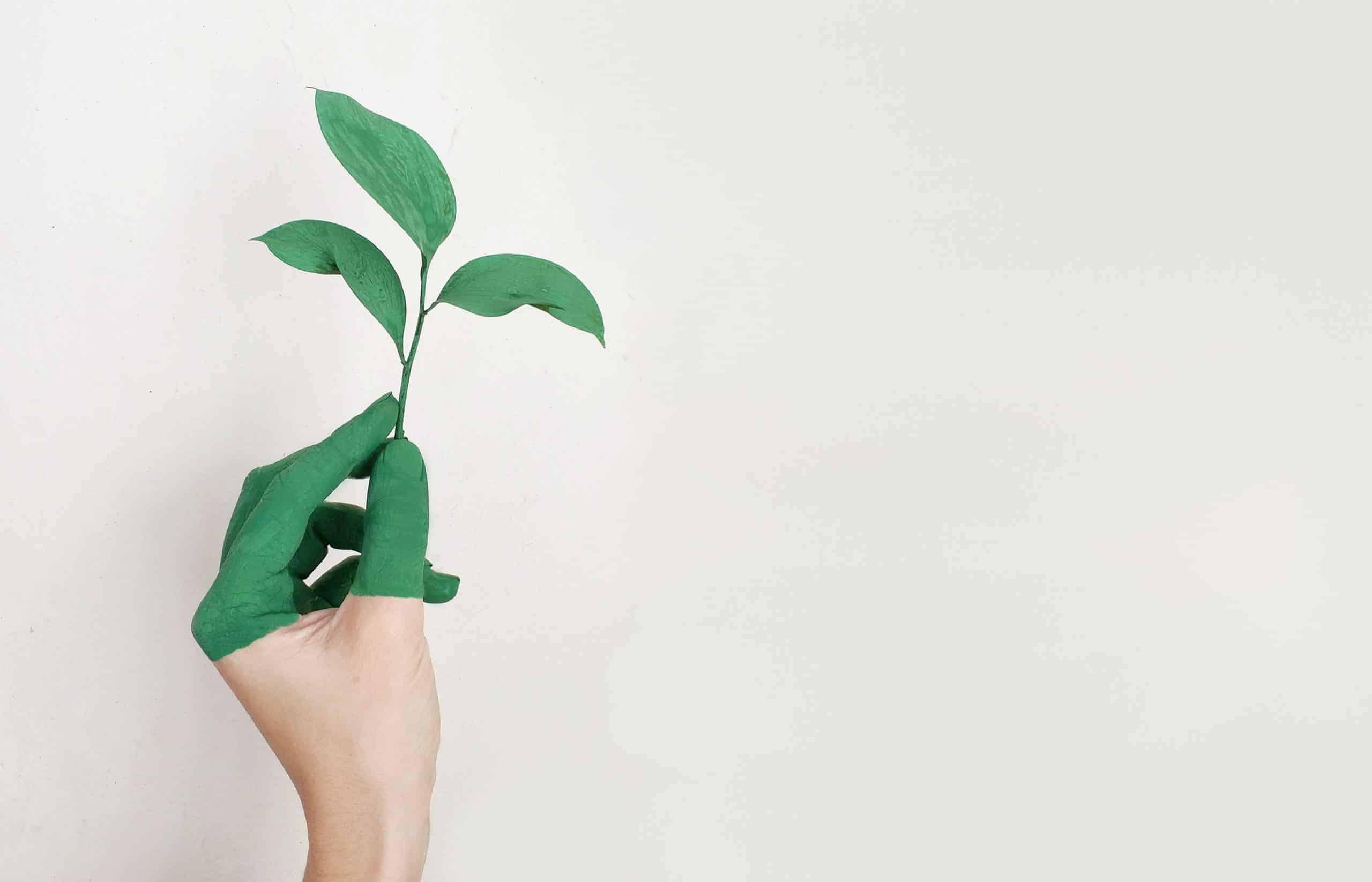 Nachhaltiges Immobilienprojekt