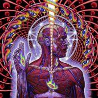 espiral-dinamica-espiritual