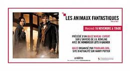 les-animaux-fantastiques_4k
