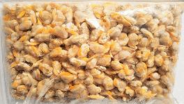 La vianda-carne de almeja es un producto sin conchas y congelado