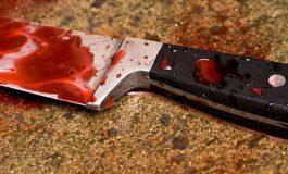 25-ամյա որդին մորը սպանել է խոհանոցային դանակով՝ կենցաղային հարցերի շուրջ ծագած վիճաբանության ժամանակ. մանրամասներ սպանությունից